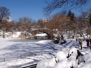 Winter Wonderland: New York's Central Park in Snow.